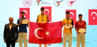 Mehmet Efe: Son dakika haberi: Tekvandoda Başkanlık Kupası'nın üçüncü günü milliler 22 madalya kazandı