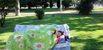 Ekinci: Kimsesiz kadın 3 aydır parkta yatıyor