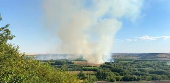 Yangın: UNESCO Dünya Mirası Listesi'nde yer alan 7 bin yıllık Hevsel Bahçeleri'nde yangın çıktı
