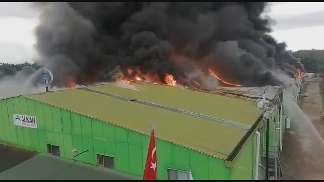 Son Dakika: Şile'de bir fabrikada yangın çıktı! Olay yerine itfaiye ekipleri sevk edildi