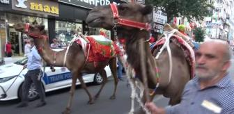 Diyarbakır Büyükşehir Belediyesi: Diyarbakır 11. Karpuz Festivalini coşkuyla kutladı, sokaklarda develer karpuz taşıdı