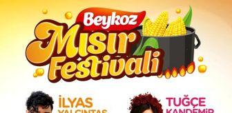 Beykoz: Tarihi Küçüksu Çayırı'nda 'Beykoz Mısır Festivali' Başlıyor