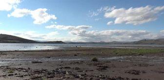 Arpaçay: Kuraklık Çıldır Gölü'nün su seviyesini düşürdü