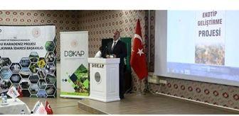 Hakan Gültekin: Damızlık Ana Arı Ekotip Geliştirme Projesi Çalıştayı DOKAP - Doğu Karadeniz Projesi Bölge Kalkınma İdaresi Başkanlığı