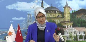 Lütfü Türkkan: İYİ Partili Lütfü Türkkan, 36 milyon dolarlık krediyi ödememiş