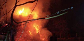 Uzundere: Erzurum'da alevler geceyi aydınlattı: 2 ev, 5 ahır ve 1 kiler kül oldu