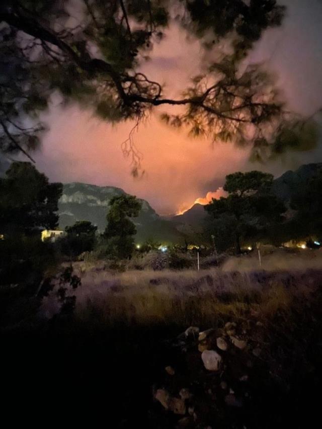Gece yıldırım düşen ormanlık alan cayır cayır yanıyor! Hala söndürülemedi