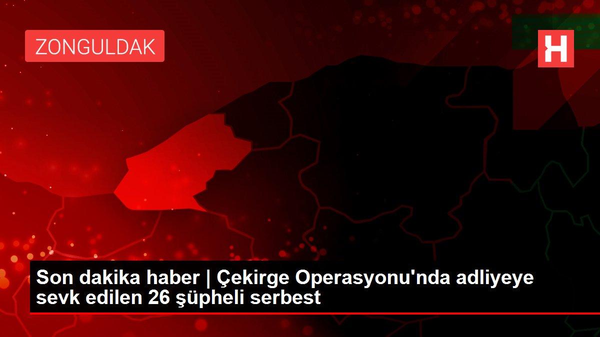 Son dakika haber | Çekirge Operasyonu'nda adliyeye sevk edilen 26 şüpheli serbest
