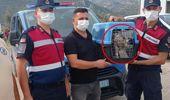 Nesli tükenmekte olan beyaz şahini evinde izinsiz besleyen vatandaşa 19 bin lira ceza