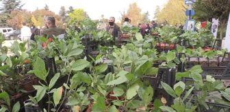Akif Özkaldı: Tarım ve Orman Bakan Yardımcısı Özkaldı, Yalova'da aronya fidesi dağıtımına katıldı