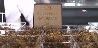Rixos: Yerli ve yabancı turistler Bodrum'da Gaziantep mutfağına akın etti