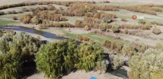 Hamur: Ağrı'da sonbahar manzarası görsel şölen sundu