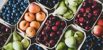 Fındık: Tahıl ve sebzede bu yıl üretimin azalacağı, meyvede artacağı tahmin edildi