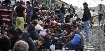 Suriye: İşte son göç istatistikleri! Türkiye'de geçici koruma altındaki 3 milyondan fazla Suriyeli, 10 ilde hayatını sürdürüyor