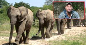 Filin altında kalan Güney Afrikalı avcı feci şekilde can verdi