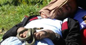 Türkiye 'yılanlı köy'e akıyor!