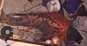 200 kiloluk köpek balığı tekneye atladı, balıkçı kanlar içinde kaldı!