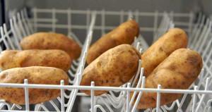 Bulaşık makinenize patates yerleştirin! Bakın ne işinize yarayacak
