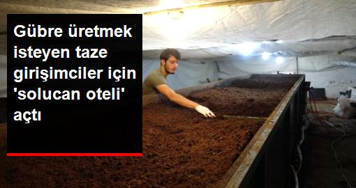 Üniversiteli Genç, Gübre Üretmek İsteyenler İçin Solucan Oteli Açtı