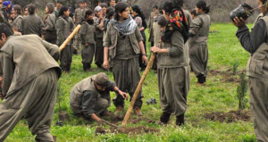 Korkunç rakamlara ulaşan gelirler! İşte PKK'nın yeni gelir kaynağı