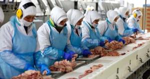 Türkiye'de çöpe atılan tavuk ayağı Çin pazarında para basıyor