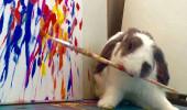 Bu tavşanın bir konuşmadığı kaldı!