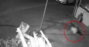 Bar cinayetinde dehşete düşüren görüntüler ortaya çıktı