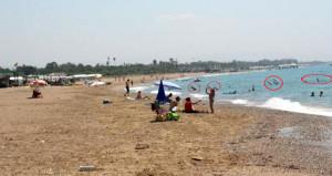 Ünlü turizm merkezinin plajında isyan ettiren görüntü!