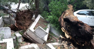 20 dakikalık kabus iki semti yıktı! Ağaçlar, mezarlar yerinden söküldü