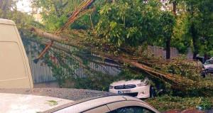 Doğal afet zararlarını KASKO ya da trafik sigortası karşılar mı?