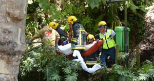 Dini festivalde dev meşe ağacı devrildi: 13 ölü, 50 yaralı