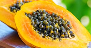 Papaya yiyenlere Salmonella virüsü bulaştı!