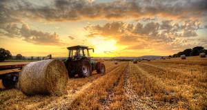Milyonlarca çiftçiyi ilgilendiriyor! Destek ücretleri belli oldu