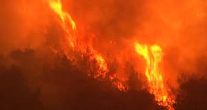 Karabük'te ormanlar alev alev yanıyor, rüzgar müdahaleyi zorlaştırıyor