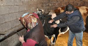 Zonguldak'ta 29 mahalle, 57 köy ve 2 belde karantina altına alındı