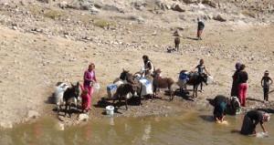 Utandıran manzara! Temiz suları olmadığı için eşekle su taşıyorlar