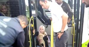 Otobüs şoföründen alkışlanacak hareket: Köpeğe çarptı ama kaçmadı
