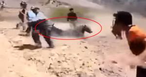 Barzani'nin Peşmergelerine ayı saldırdı!