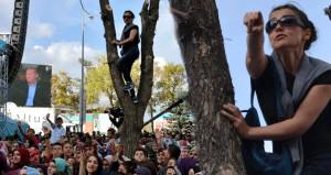 Erdoğan'a sesini duyurmak için ağaca çıkmıştı, sonunda muradına erdi
