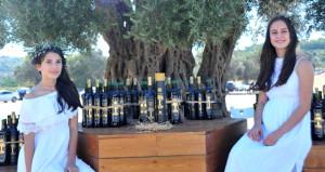 Bin 800 yıllık ağaçtan çıkan zeytinyağı, 22 bin TL'ye satıldı