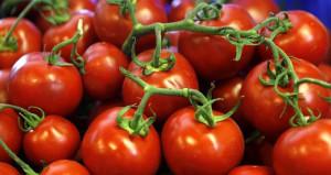Anlaşma tamam! Türk domatesinin Rusya'ya gideceği tarih belli oldu
