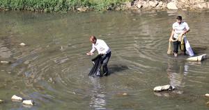 Dicle Nehri'nde sular çekildi, balıklar telef oldu