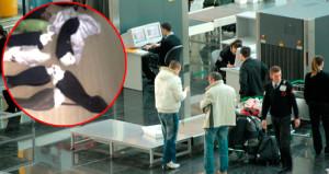 Havaalanında yakalandı! Çorapların içine canlı canlı sokup getirmişler