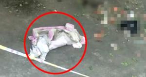 Öğrenci yurdunda gizlice doğurduğu bebeğini 5inci kattan attı!