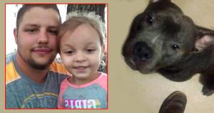 Çocuklarla oynasın diye aldıkları pitbull 3 yaşındaki kızı parçaladı