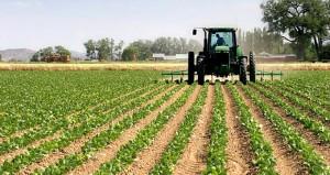 Çiftçiye müjde! Tarımı desteklemek için 6 yeni teşvik geliyor