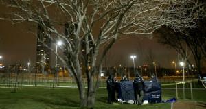 İstanbulun göbeğinde dehşet! Ellerini arkadan bağlayıp ağaca astılar
