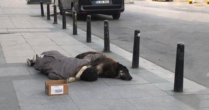 Yürek sızlatan kare! Köpeğe sarılan çocuk, tüm gece kaldırımda uyudu