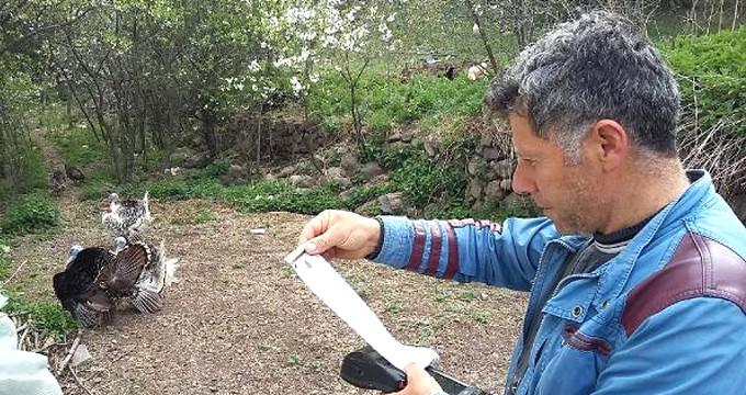 Sayacı okumak için bahçeye giren görevli, neye uğradığını şaşırdı