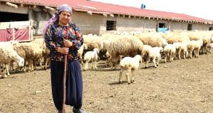 Üniversite mezunu genç kadın, çiftlik kurdu şimdi paraya para demiyor